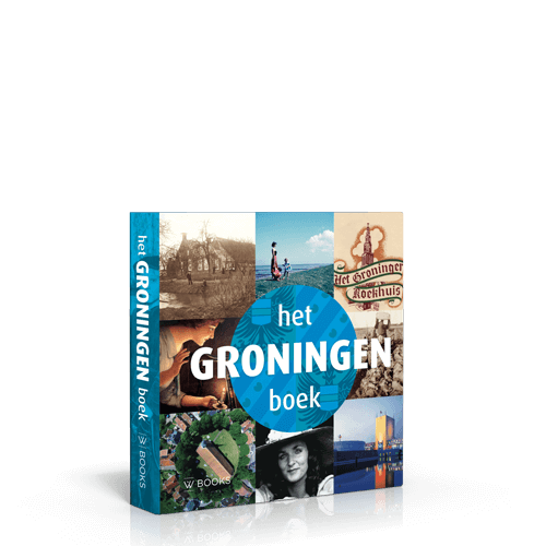 Het Groningen Boek | 3de druk-489