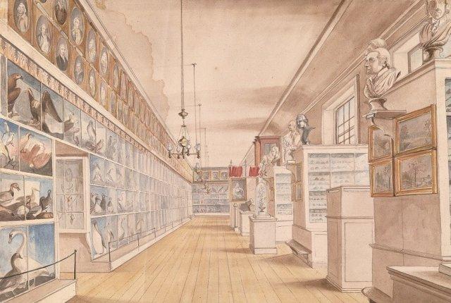 Kabinetten, galerijen en musea-1257