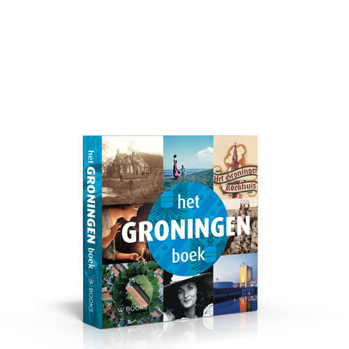 Het Groningen Boek 3e Druk Wbooks