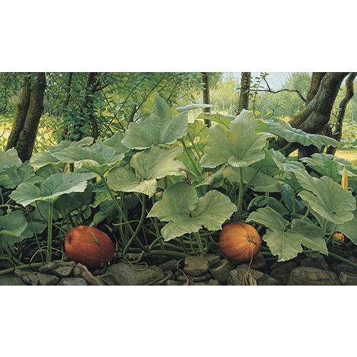 Joke Frima | Flora - Schilderijen