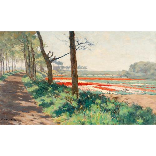 De schilders van de Duin- en Bollenstreek